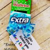 Wrigley's Extra Gum DIY and Printable