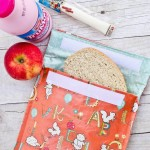 Reusable Sandwich Bags & The Ribbon Retreat